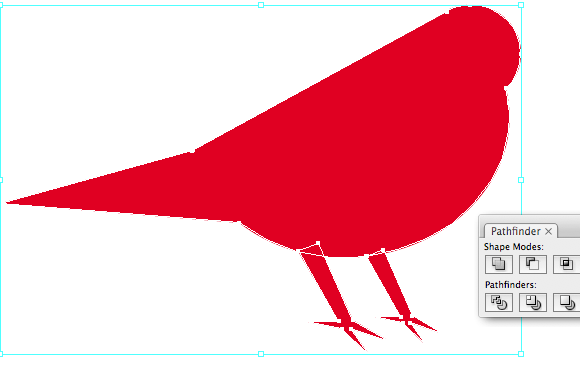 Drawing the paws of the bird