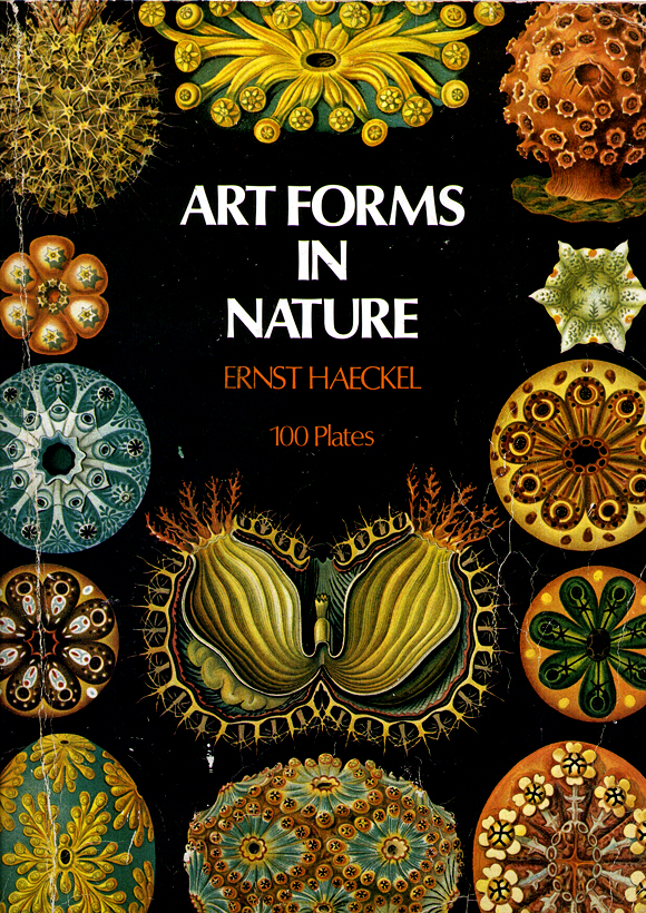 Cover Art forms in Nature